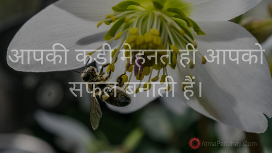 Hard work will bring you on the path of success Hindi stories, motivational story, hard work