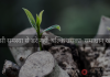 hindi-motivational-story-find-solutions